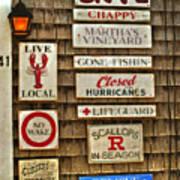 The Vineyard Poster by Joann Vitali