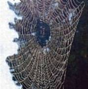 The Web Poster