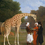 The Zoological Garden Poster