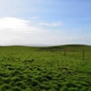 Thick Grass Field Abutting The Cliff's Of Moher In Ireland Poster