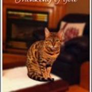Thinking Of You - Bengal Cat Poster