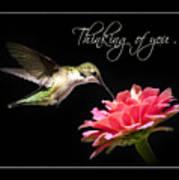 Thinking Of You Hummingbird Greeting Card Poster