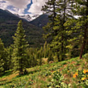 This Is Washington State No.1 - Klipchuck Poster by Paul W Sharpe Aka Wizard of Wonders