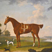 Thomas Egerton's Chestnut Hunter With A Groom And Two Hounds And A Terrier In A River Landscape Poster