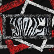 Those Eyes...zebra Poster