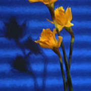 Three Cheers - Yellow Daffodils In A Red Bowl Poster