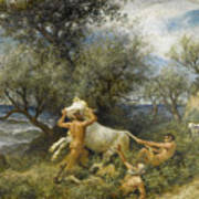 Three Faun With Cow And Calf Poster