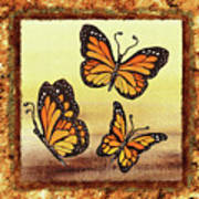 Three Monarch Butterflies Poster