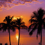 Three Palm Trees At Sunset Poster