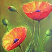 Three Poppies Poster
