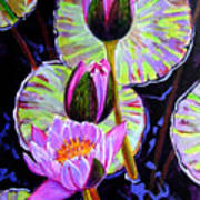 Three Purple Lilies Poster