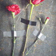 Three Red Flowers Taped To Wooden Background Poster