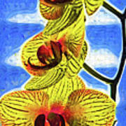 Three Yellow Orchid Blooms Poster