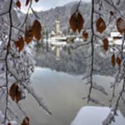 Through The Snow Trees Poster