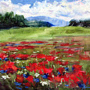 Thunder Clouds Over Bavarian Meadow Poster
