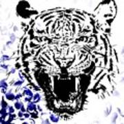 Tiger And Paisley Poster