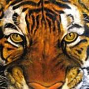 Tiger mask  original oil painting Poster