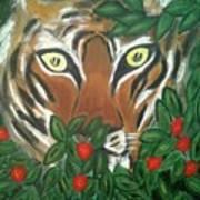 Tiger Prey  Poster