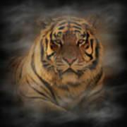 Tiger Poster by Sandy Keeton
