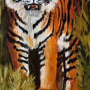 Tiger Wildlife Art Poster