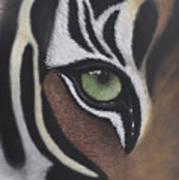 Tiger's Eye Poster