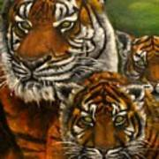 Tigers Family Oil Painting Poster