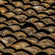 Tile Roof 2  Poster