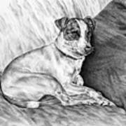 Time Out - Jack Russell Dog Print Poster by Kelli Swan