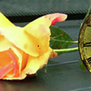 Time To Give A Rose - Yellow And Pink Rose - Clock Face Poster