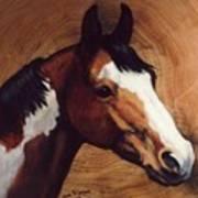 Tingeys Fancy   Paint Horse Poster