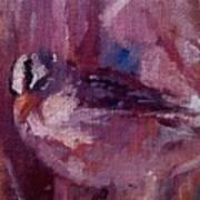 Tiny Bird Study #1 Poster