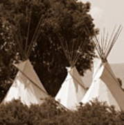 Tipis In Toppenish Poster