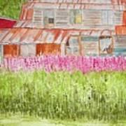 Tlingit Home In Hoonah Poster