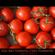 Tomato Tomahto Fine Art Food Photo Poster Poster