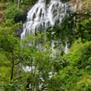 Top Of Munson Creek Falls Poster