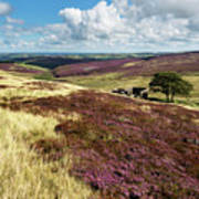 Top Withins On Haworth Moor Poster