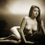 Toriwaits Nude Fine Art Print Photograph In Black And White 5102 Poster