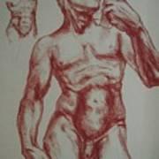 Torso Of  Michelangelo   David  Poster
