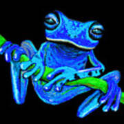 Totally Blue Frog On A Vine Poster