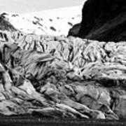 tourists at ash covered Skaftafell glacier and end moraine Vatnajokull national park in Iceland Poster