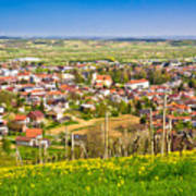 Town Of Ivanec Aerial Springtime View Poster