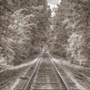 Tracks Bw Poster