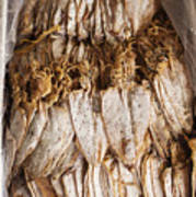 Traditional Sun Dried Squid In Kep Market Cambodia Poster