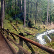 Trail Over Sol Duc Falls Bridge In Olympic National Park Poster