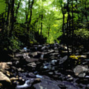 Trail To Chimney Top Poster