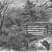Trapping Wild Turkeys, 1868 Poster