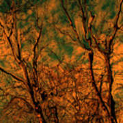 Tree Abstract Poster