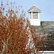 Tree And School House 795 Poster