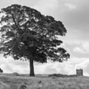 Tree And The Cage Tower In The Distance In Lyme Park Estate In B Poster