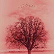 Tree Art 01 Poster